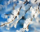 Доставайте валенки: синоптики обещают омичам снежные выходные