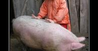 В Омске мать напилась до беспамятства и бросила 10-месячного сына