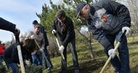 Омск готовится к традиционным весенним субботникам