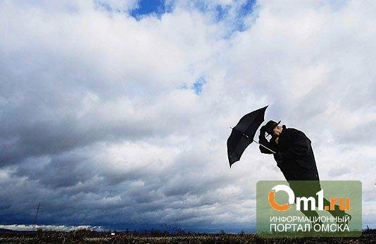 Выходные дома: на Омск надвигаются штормовые ветра