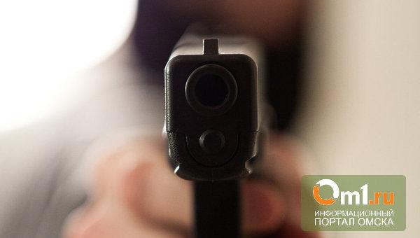 В Омске 16-летнему подростку выстрелили в бедро из «воздушки»