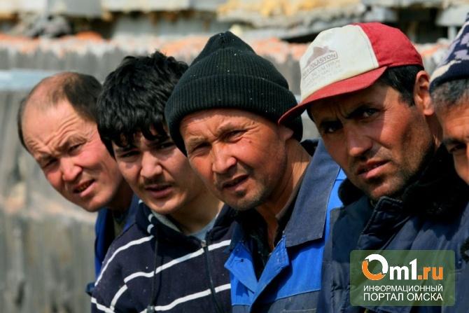 За осень в Омск пытались проникнуть 20 нелегальных мигрантов