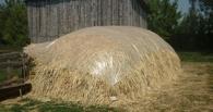 Пропавшего в Омской области ребенка нашли в стоге сена