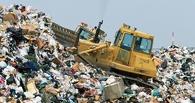 В Омске вопрос с мусором не решится до Нового года