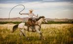 Омич разыскивает пастуха с белой гончей, который кнутом повредил его машину
