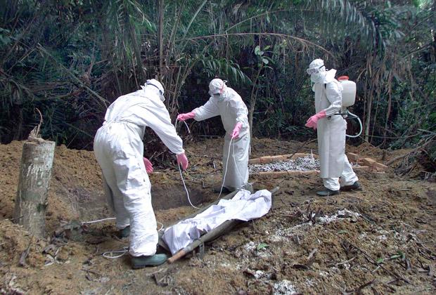 Спим спокойно: Эбола доберется до России только к декабрю