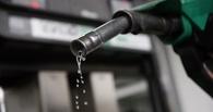Омскую АЗС оштрафовали за некачественный бензин