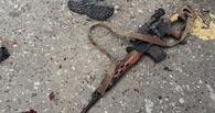 «Собаки по-собачьи подыхают»: семь боевиков уничтожены в Доме печати в Грозном