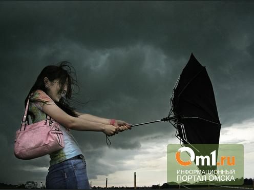 МЧС предупреждает омичей о сильном ветре, грозе и граде