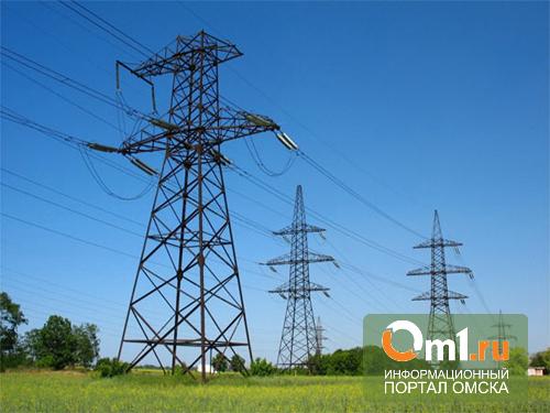 РЭК ищет омичам нового гарантирующего поставщика электричества