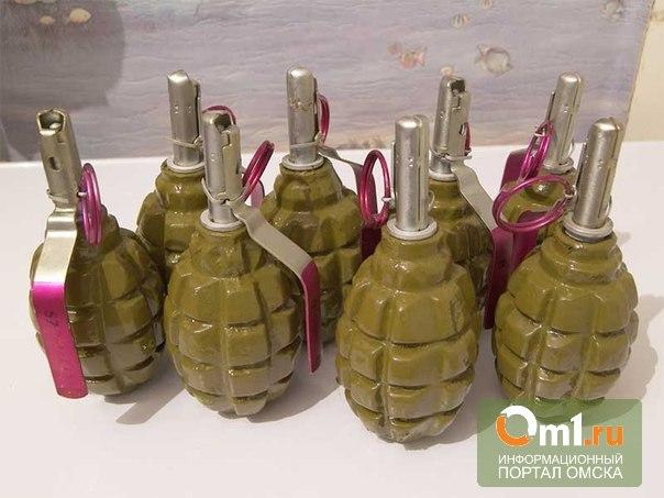 На севере Омской области нашли партию боевых гранат