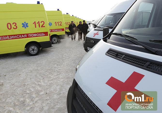 Два человека погибли в ДТП на трассе в Омской области
