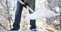 Жители Омска сами убрали снег с тротуаров и остановок
