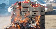 Омский Россельхознадзор сжигает около 15 000 тонн продуктов в год