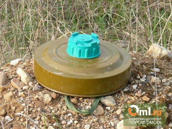 В Омске дачник обнаружил противотанковую мину