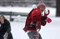 В Бельгии ввели штраф в 100 евро за бросание снежками