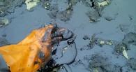 Омский общественник расскажет о мазутном озере в Степном лично Шойгу