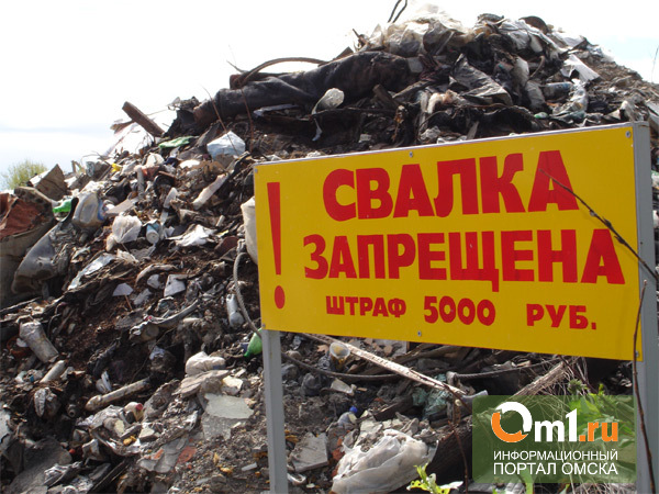 Прокуратура Омска борется с несанкционированными свалками
