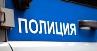 Под Омском водитель насмерть сбил пешехода и скрылся