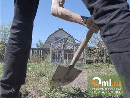 В Омской области брат лопатой нечаянно пробил голову сестре
