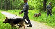 В Омске из дома сбежал 16-летний подросток