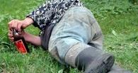 В Омске вор уснул на пороге дачи, которую хотел обокрасть