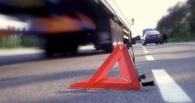 На трассе Омск - Новосибирск в ДТП с фурой пострадал 8-летний мальчик