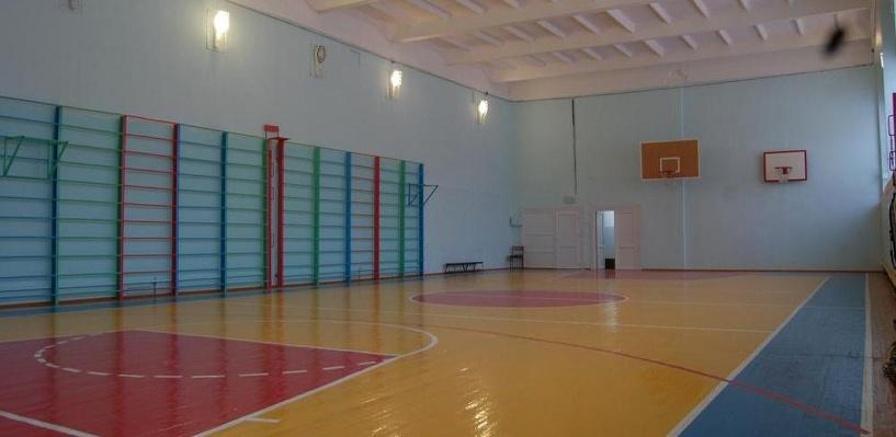 Учительница физкультуры из Омска уволилась после избиения пятиклассника скакалкой