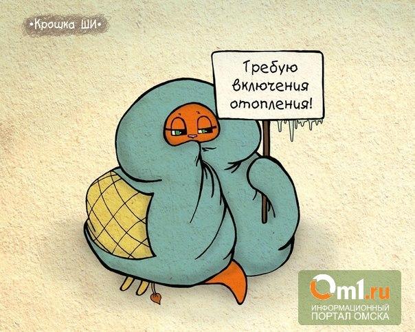 В Омске подключили к теплу более 20% домов