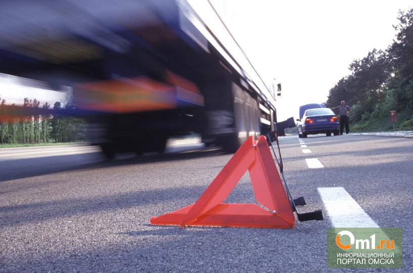 На трассе «Омск-Тара» в ДТП погибла женщина-водитель
