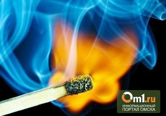 Омича признали виновным в сожжении человека
