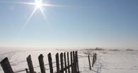 Погода на выходные в Омске: мороз и солнце – день чудесный