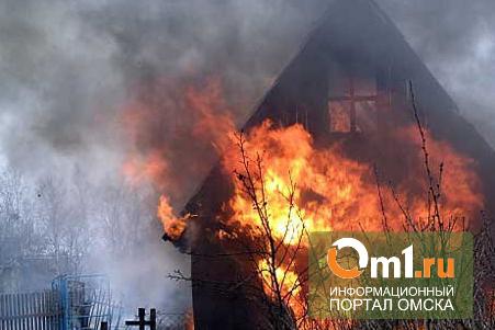 В Омске в сгоревшем дачном домике нашли фрагменты тела человека