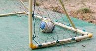 Прокуратура начала проверку по факту падения футбольных ворот в Омске
