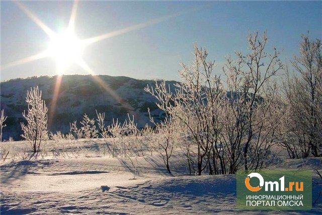 Пережили холода: в Омске потеплеет уже на будущей неделе