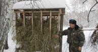 Для зверей в Омской области прокладывают тропы и разбрасывают корм