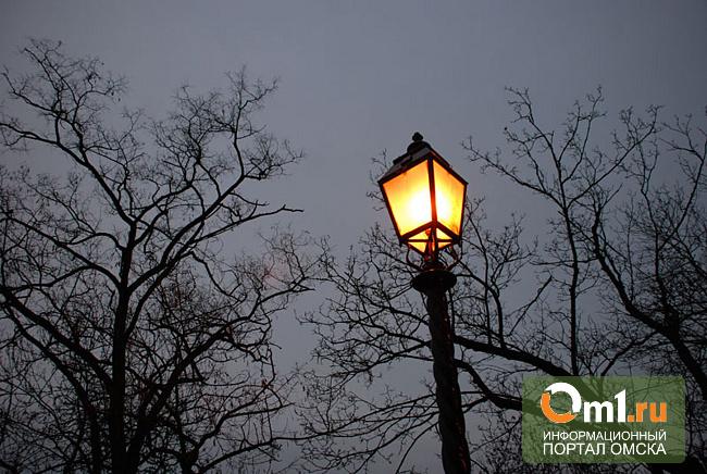 В омских деревнях фонари сделали только после вмешательства прокурора