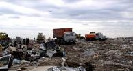В Омске может появиться «мусорный» оператор, назначаемый из Москвы