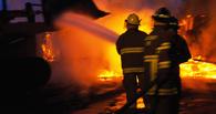 В Омской области на Новый год в огне погибли два человека