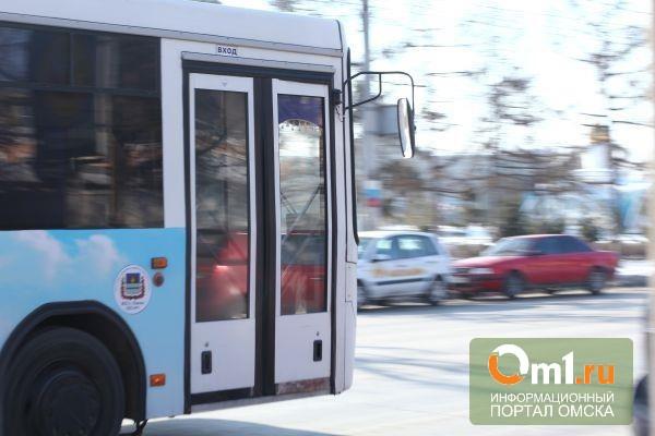 В Омске водитель автобуса за гибель ребенка отправлен в колонию на три года