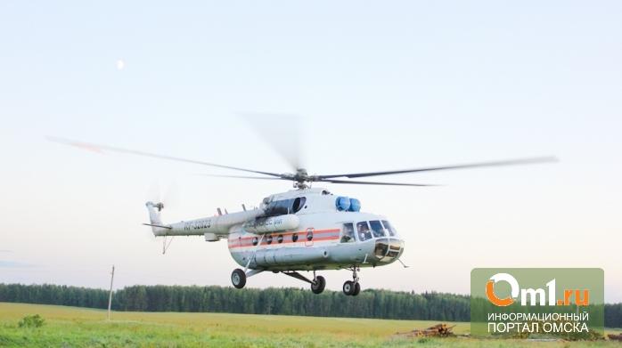 Пропавшую в Омской области 1,5-годовалую девочку ищут с помощью вертолета