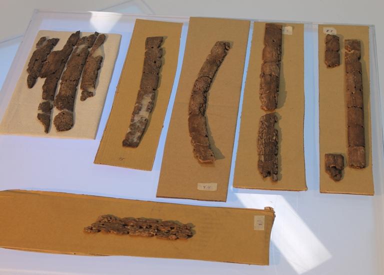 Омичам показали костяной доспех воина, обнаруженный на раскопках «Стоянки Омской»