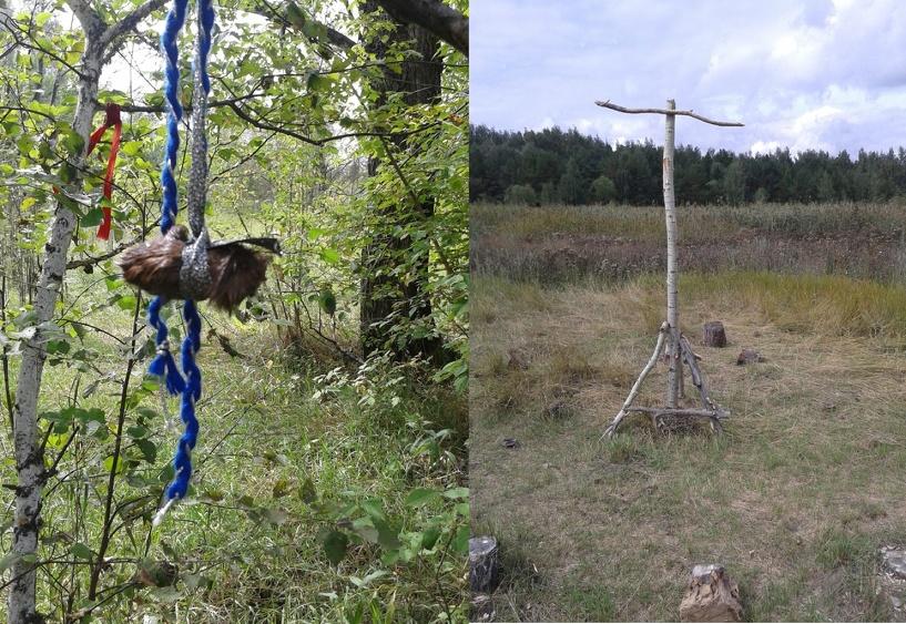 В Омске нашли сатанинское место для жертвоприношений