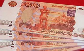 Омич пытался купить себе пуховик на деньги «Банка приколов»