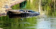 В Омске из-за проблемной котельной в Степном образовалось мазутное озеро