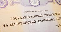 В Омске мошенники заработали на материнском капитале 40 млн рублей