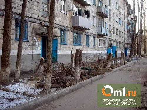 Мэрия обязуется возместить ущерб деревьям на омском «Арбате»