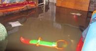 Воды по колено: из-за паводка омичи тонут в своих домах (фото)