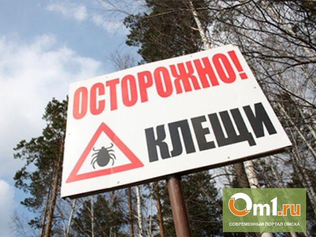 В Омске уже готовятся к появлению клещей