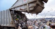 Над Омском снова нависла угроза мусорного коллапса